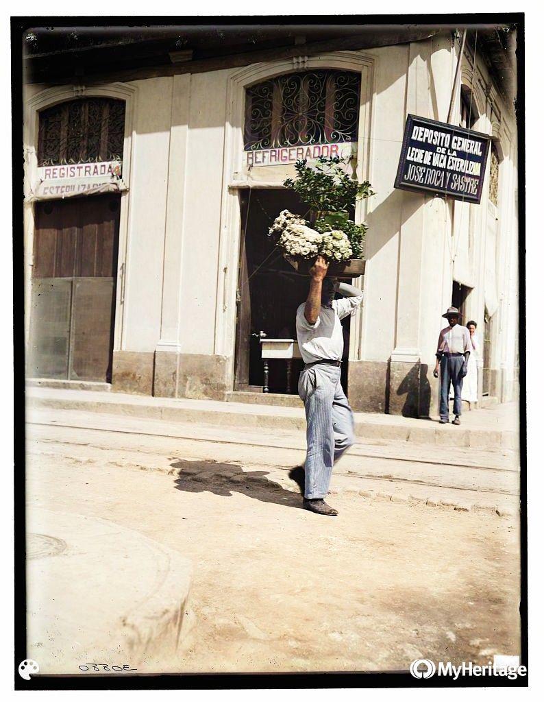 Uliczny sprzedawca kwiatów w Hawanie